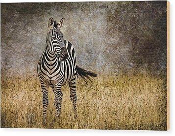 Zebra Tail Flick Wood Print by Mike Gaudaur