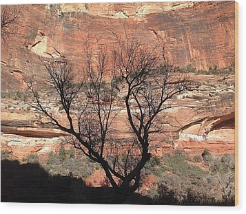 Zion Canyon Tree #1 Wood Print by Feva  Fotos
