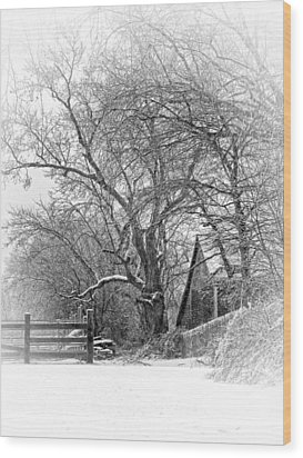 Flurries Wood Print by Robin-lee Vieira