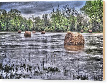0804-3586 Flooded Hay Wood Print by Randy Forrester