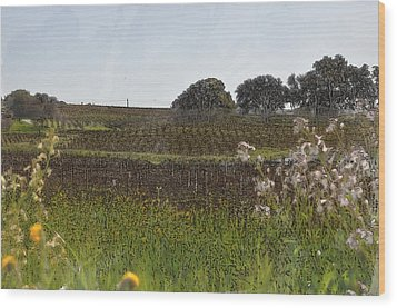 Beautiful California Vineyard Framed With Flowers Wood Print by Brandon Bourdages