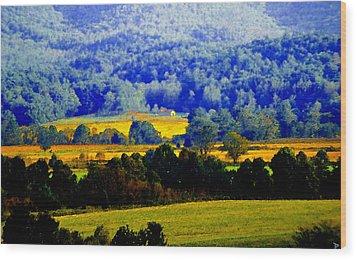 Blue Ridge Wood Print by David Lee Thompson