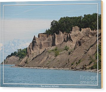 Chimney Bluffs On Lake Ontario Wood Print by Rose Santuci-Sofranko