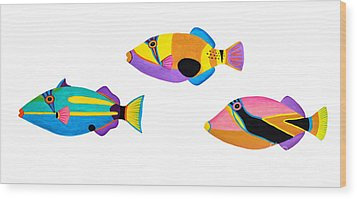 Collection Of Trigger Fishes Wood Print by Opas Chotiphantawanon