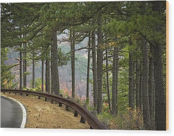 Curve In The Road Wood Print by Cindy Rubin