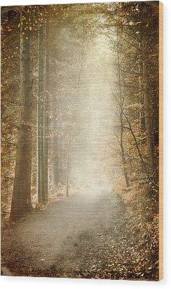Early Morning Wood Print by Svetlana Sewell