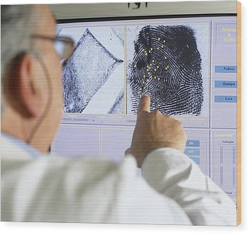 Fingerprint Analysis Wood Print by Mauro Fermariello