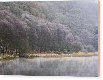 Lower Lake, Glendalough, County Wood Print by Peter McCabe