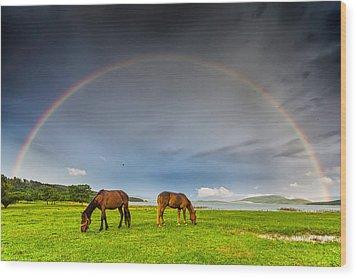 Rainbow Horses Wood Print by Evgeni Dinev