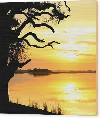 Remember When Wood Print by Karen Wiles