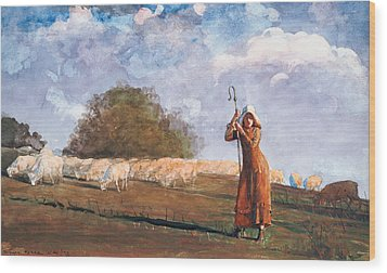 The Young Shepherdess Wood Print by Winslow Homer