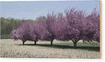 Trees On Warwick Wood Print by Trish Tritz