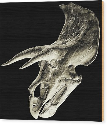 Triceratops Dinosaur Skull Wood Print by Smithsonian Institute