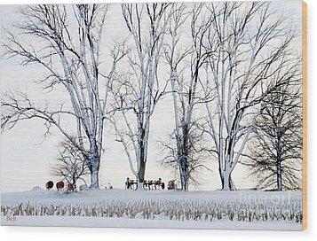 Winter Calm Wood Print by Christine Belt