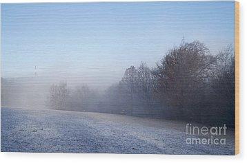 Winter Landscape Wood Print by Odon Czintos