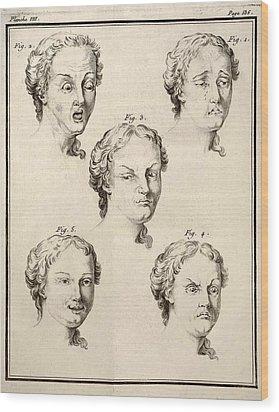 1749 Human Emotions And Expression Buffon Wood Print by Paul D Stewart