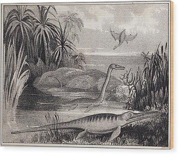 1837 Extinct Prehistoric Animals Dorset Wood Print by Paul D Stewart