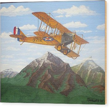 1917 Curtis Jenny Jn4 Used By The Army Air Corps Wood Print by Mickael Bruce