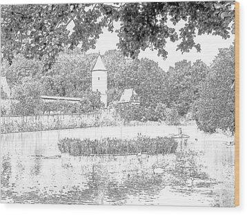 Duck Pond Dinkelsbuhl Germany Wood Print by Joseph Hendrix