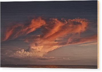 Madeira Beach Wood Print by Mario Celzner