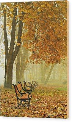 Red Benches In The Park Wood Print by Jaroslaw Grudzinski