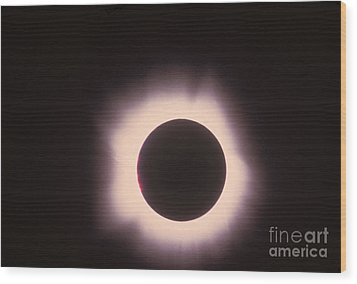 Total Solar Eclipse With Corona Wood Print by Science Source