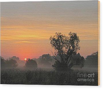 Sunset Wood Print by Odon Czintos