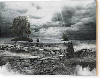 No Title  Wood Print by Mariusz Zawadzki