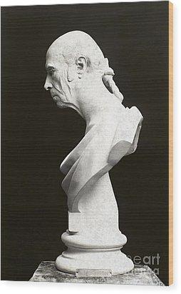 James Madison (1751-1836) Wood Print by Granger