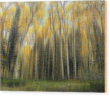 2399 Wood Print by Peter Holme III