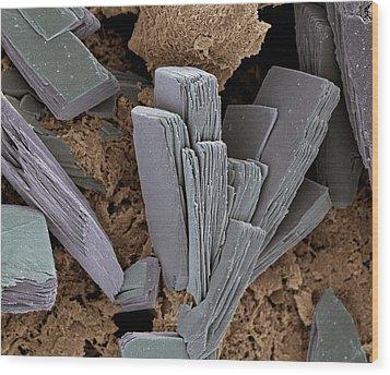 Blood Clot Crystals, Sem Wood Print by Steve Gschmeissner