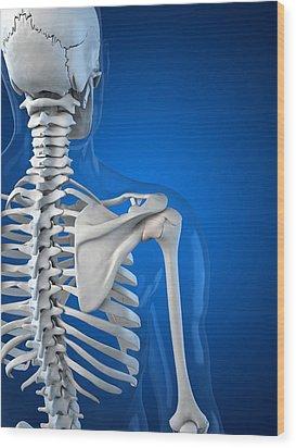 Upper Body Bones, Artwork Wood Print by Sciepro