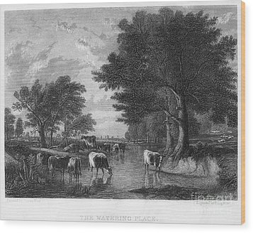 Cattle, 19th Century Wood Print by Granger