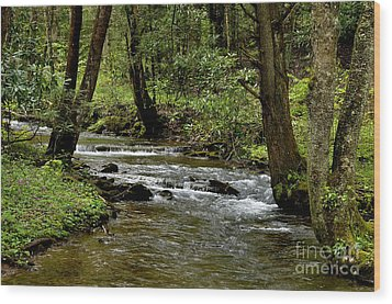 Craig Run Monongahela National Forest Wood Print by Thomas R Fletcher
