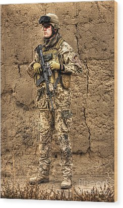 Hdr Image Of A German Army Soldier Wood Print by Terry Moore