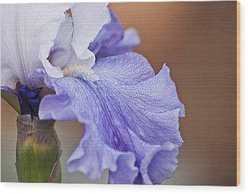 Iris Wood Print by Christopher Gaston