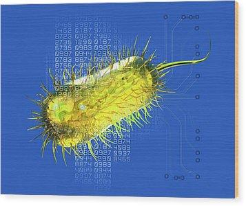 Bacterial Computing, Conceptual Artwork Wood Print by Victor Habbick Visions