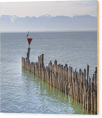 Lake Constance Wood Print by Joana Kruse