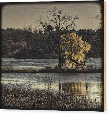 A Place To Think Wood Print by Thomas Young