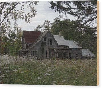 Abandoned Farmhouse 1 Wood Print by Bruce Ritchie
