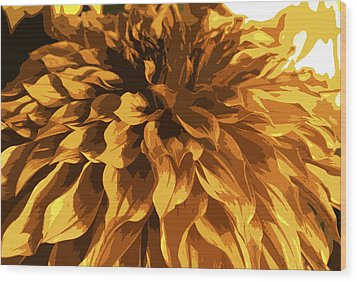 Abstract Flowers 14 Wood Print by Sumit Mehndiratta