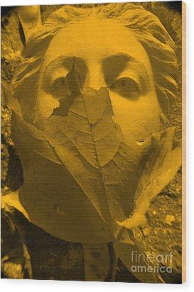 Afrodita  Autum Wood Print by Yury Bashkin