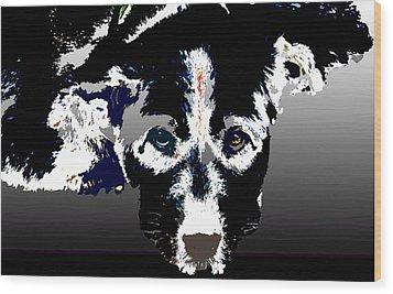 Akita Chow Wood Print by One Rude Dawg Orcutt