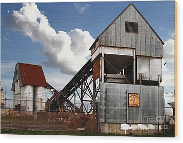 Alive And Well In America . The Old Industrial Sand Plant In Berkeley California . 7d13952 Wood Print by Wingsdomain Art and Photography