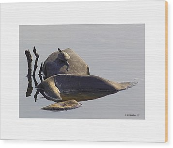All By Myself Wood Print by Brian Wallace