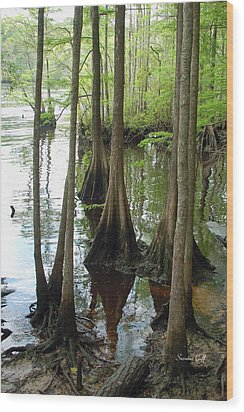 Along The Waccamaw Wood Print by Suzanne Gaff