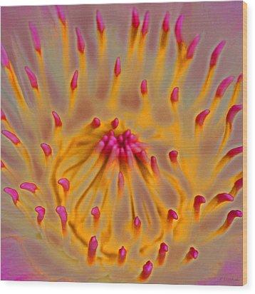 An Inner Glow Wood Print by Kerri Ligatich