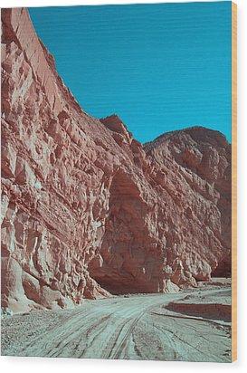 Anza Borrego Trail Wood Print by Naxart Studio