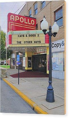 Apollo Theatre, Princeton, Illinois, Usa Wood Print by Bruce Leighty
