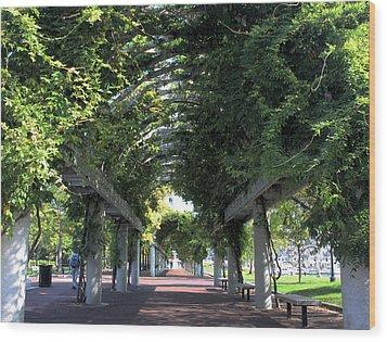 Arbor In Boston Wood Print by Kristin Elmquist